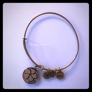 Alex and Ani Jewelry - Alex and Ani Bracelet